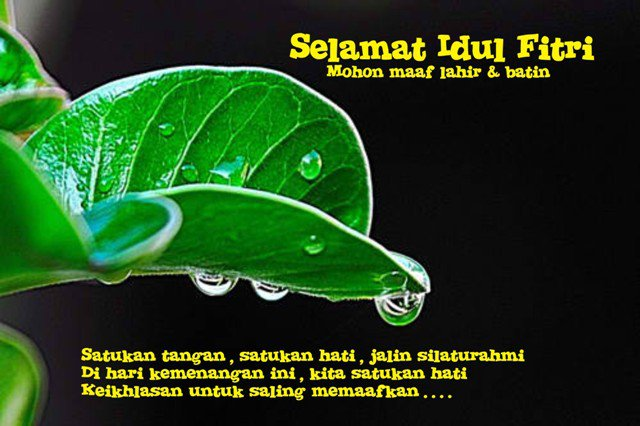 Courtesy from www.hallobogor.com